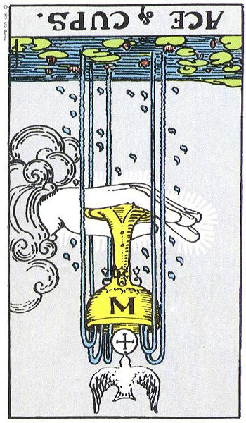 Ace of Cups (2/2)