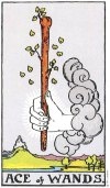 Ace of Wands -Card images are © Copyright U.S. Games Systems, Inc.""