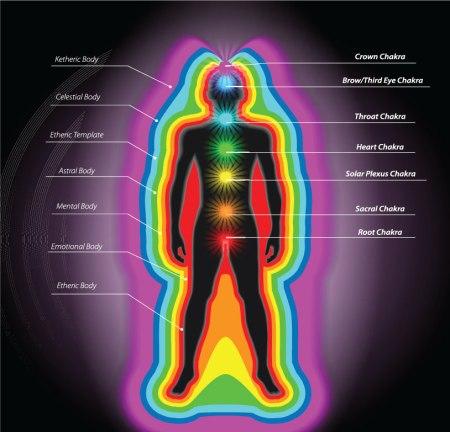 chakra-system-image-source-Miro-Kovacevic/shutterstock.com